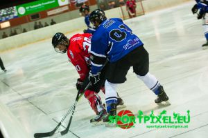 2. HF - Steyr Panthers 1 - Linzer Oldies
